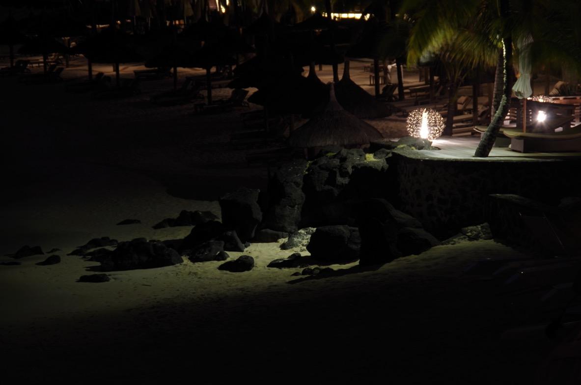 deetec-frederic-poite-artiste-design-lumiere-led-royal-palm