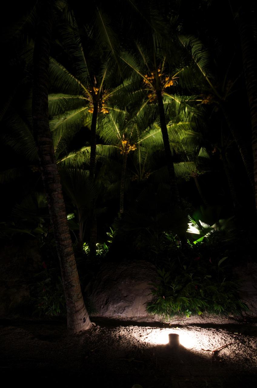 deetec-frederic-poite-artiste-design-lumiere-led-royal-palm10