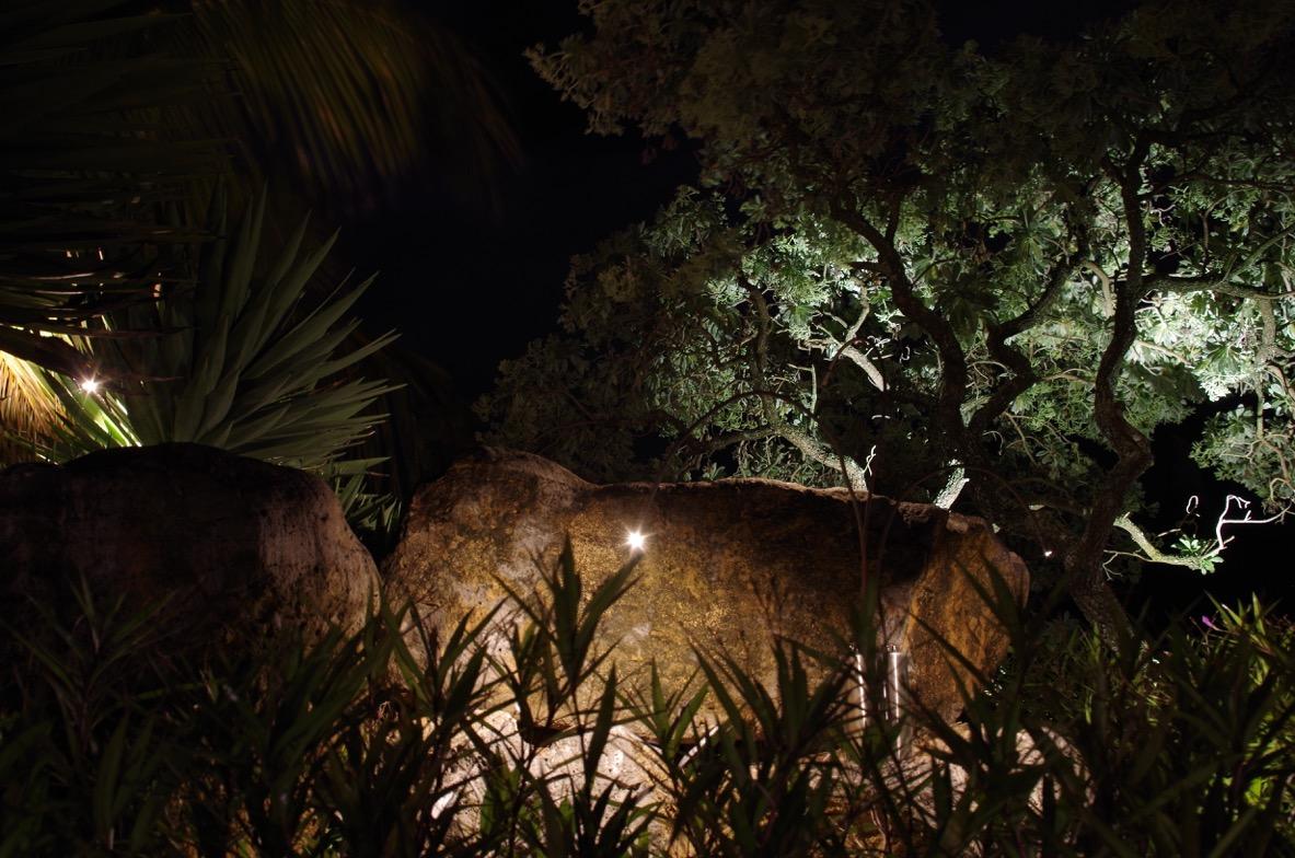 deetec-frederic-poite-artiste-design-lumiere-led-royal-palm2