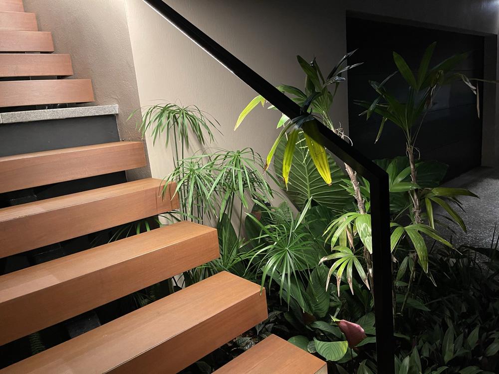 Deetec-EU-Jardin-particulier-La-réunion